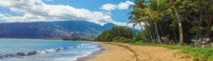 Hire a private investigator in Hawaii