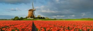 Hire a private investigator in the Netherlands